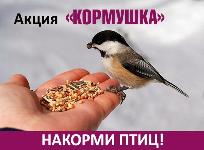 Экологическая акция «Кормушка для птиц»